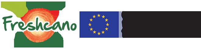 logo-flag-en