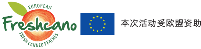 logoflag-ch